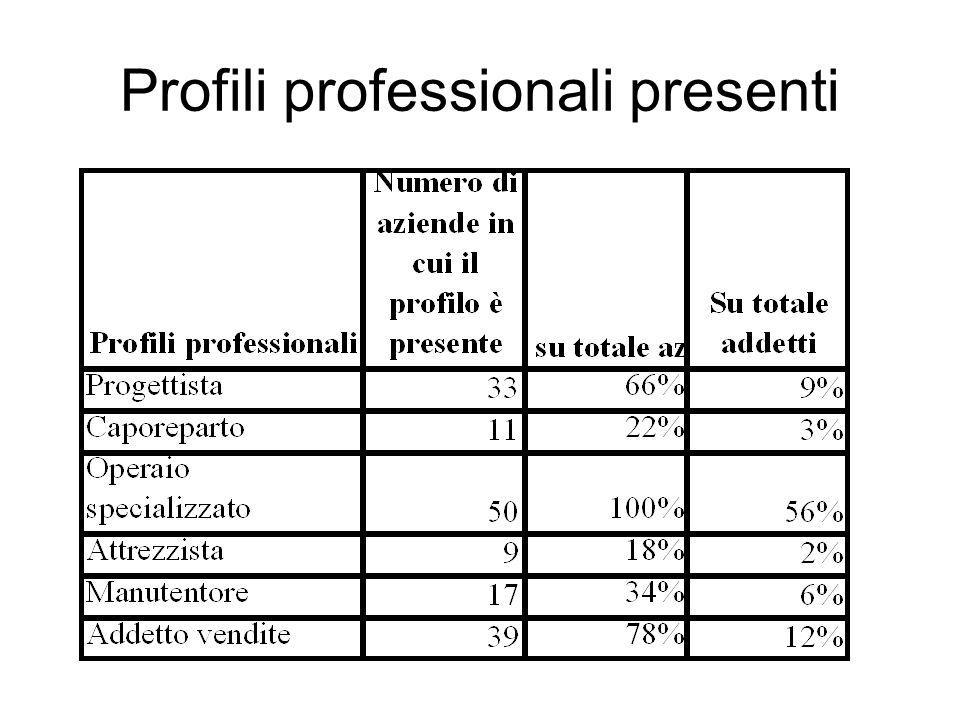 Profili professionali presenti