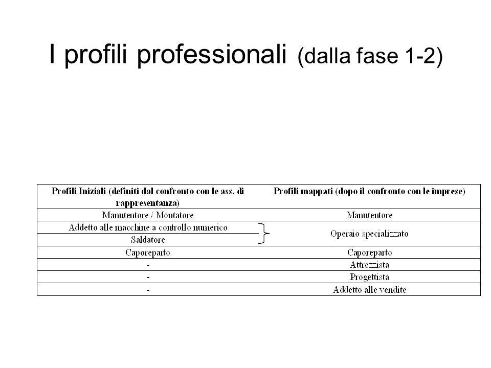 I Profili strategici (secondo le associazioni di rappresentanza ed i testimoni privilegiati) Un esempio dalla meccanica