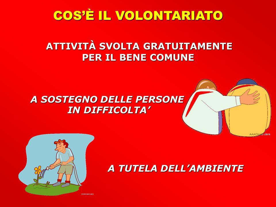 LEFFICACIA DEL VOLONTARIATO 1.TEMPESTIVITÀ DEGLI INTERVENTI 3.