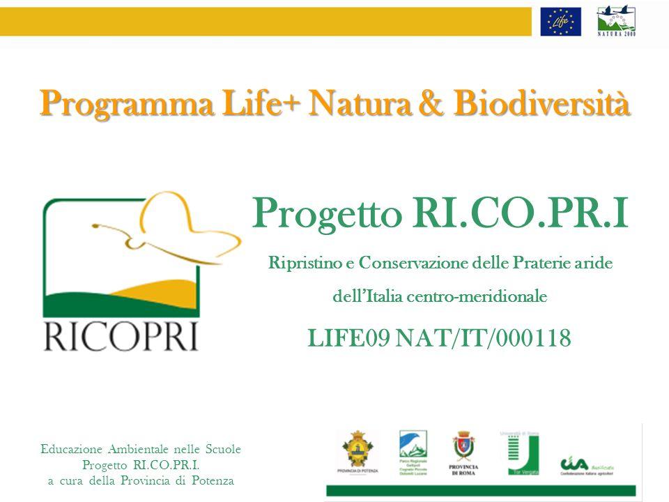Educazione Ambientale nelle Scuole Progetto RI.CO.PR.I. a cura della Provincia di Potenza Programma Life+ Natura & Biodiversità Progetto RI.CO.PR.I Ri