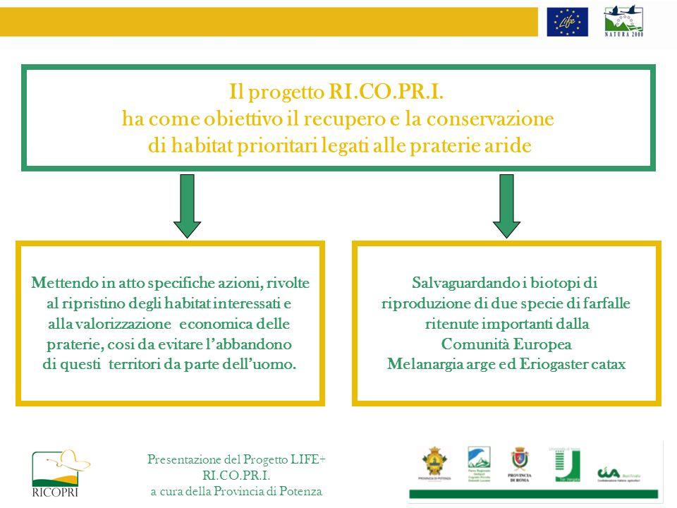 Il progetto RI.CO.PR.I. ha come obiettivo il recupero e la conservazione di habitat prioritari legati alle praterie aride Mettendo in atto specifiche