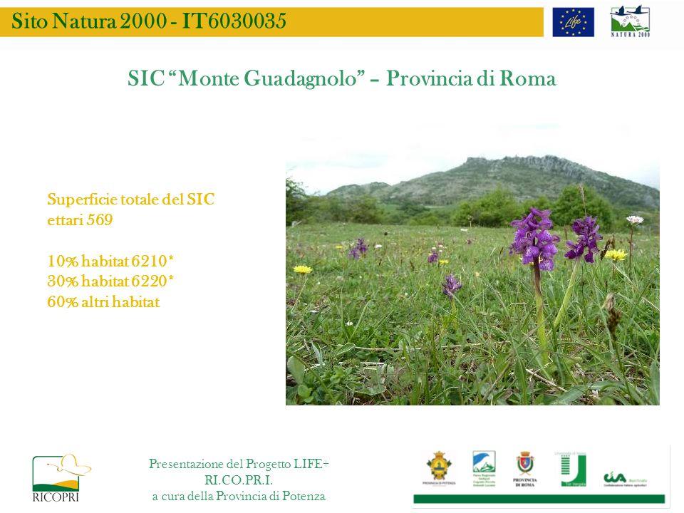 SIC Monte Guadagnolo – Provincia di Roma Superficie totale del SIC ettari 569 10% habitat 6210* 30% habitat 6220* 60% altri habitat Sito Natura 2000 -