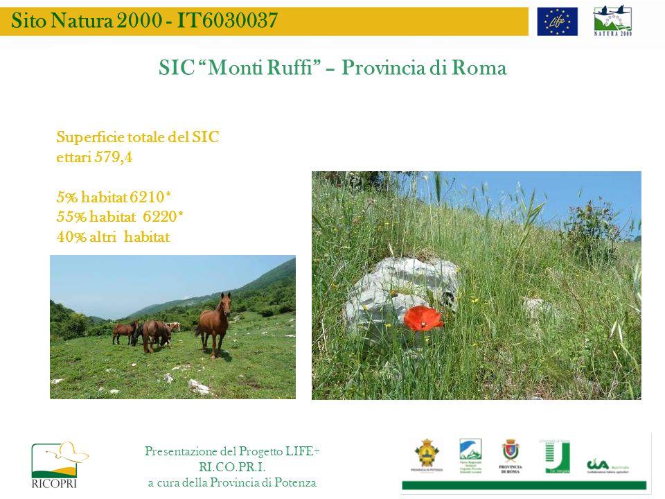 SIC Monti Ruffi – Provincia di Roma Superficie totale del SIC ettari 579,4 5% habitat 6210* 55% habitat 6220* 40% altri habitat Sito Natura 2000 - IT6