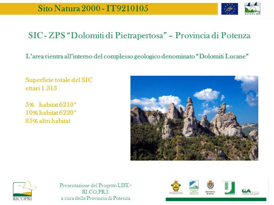 SIC - ZPS Dolomiti di Pietrapertosa – Provincia di Potenza Superficie totale del SIC ettari 1.313 5% habitat 6210* 10% habitat 6220* 85% altri habitat