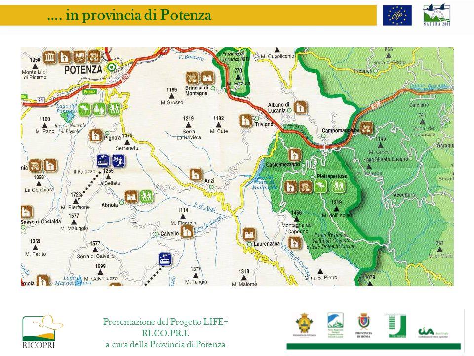 …. in provincia di Potenza Presentazione del Progetto LIFE+ RI.CO.PR.I. a cura della Provincia di Potenza