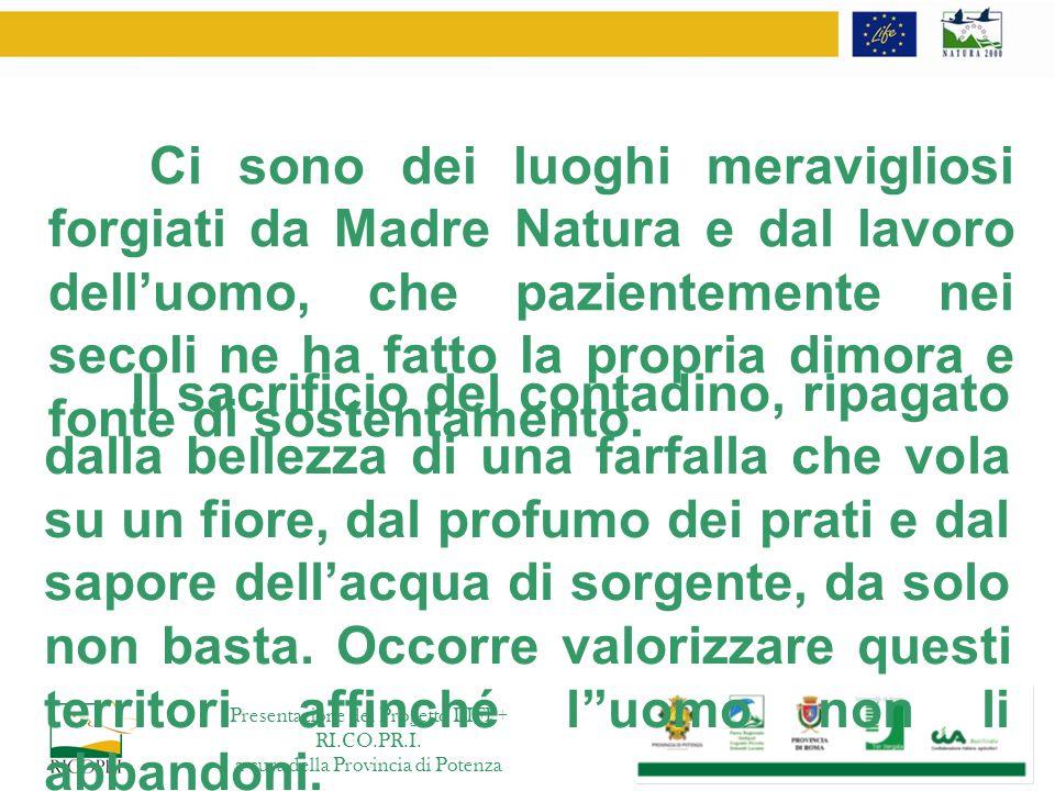Obiettivo generale: contribuire allattuazione, allaggiornamento e allo sviluppo della politica e della legislazione ambientale dellUnione Europea Il programma LIFE Cofinanziamento di progetti pilota o dimostrativi con il valore aggiunto europeo.