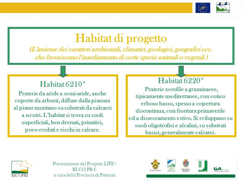 Habitat di progetto (L'insieme dei caratteri ambientali, climatici, geologici, geografici ecc. che favoriscono l'insediamento di certe specie animali