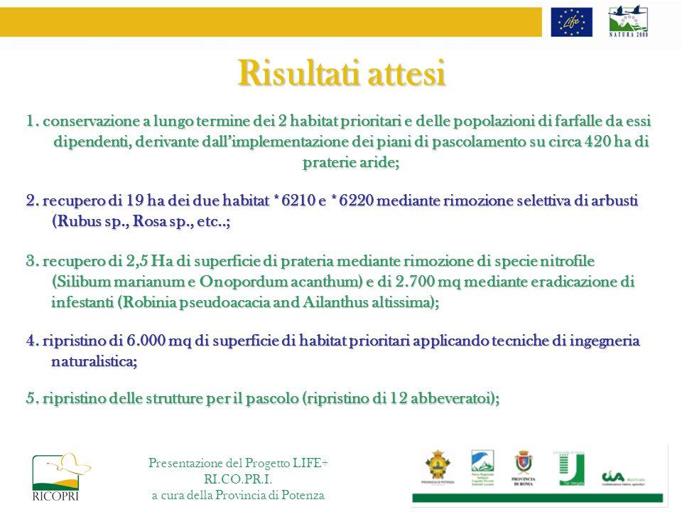 Risultati attesi 1. conservazione a lungo termine dei 2 habitat prioritari e delle popolazioni di farfalle da essi dipendenti, derivante dallimplement
