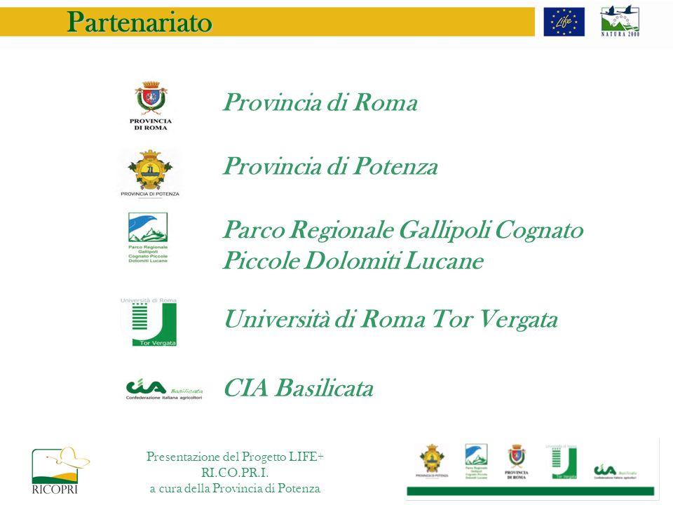 Partenariato Provincia di Roma Provincia di Potenza Parco Regionale Gallipoli Cognato Piccole Dolomiti Lucane Università di Roma Tor Vergata CIA Basil