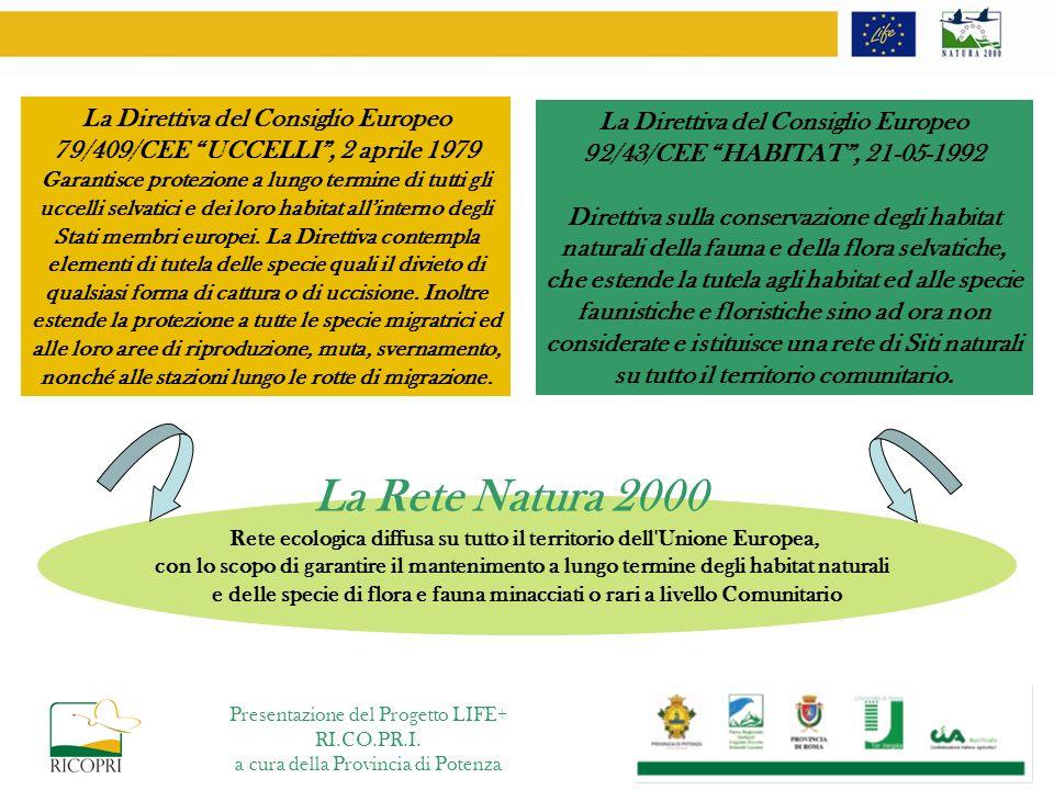 SIC - ZPS Dolomiti di Pietrapertosa – Provincia di Potenza Superficie totale del SIC ettari 1.313 5% habitat 6210* 10% habitat 6220* 85% altri habitat Larea rientra allinterno del complesso geologico denominato Dolomiti Lucane Sito Natura 2000 - IT9210105 Presentazione del Progetto LIFE+ RI.CO.PR.I.