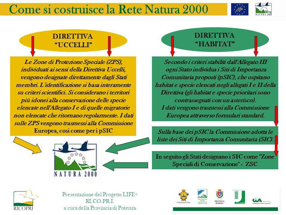 Come si costruisce la Rete Natura 2000 DIRETTIVA HABITAT DIRETTIVA UCCELLI Secondo i criteri stabiliti dall'Allegato III ogni Stato individua i Siti d