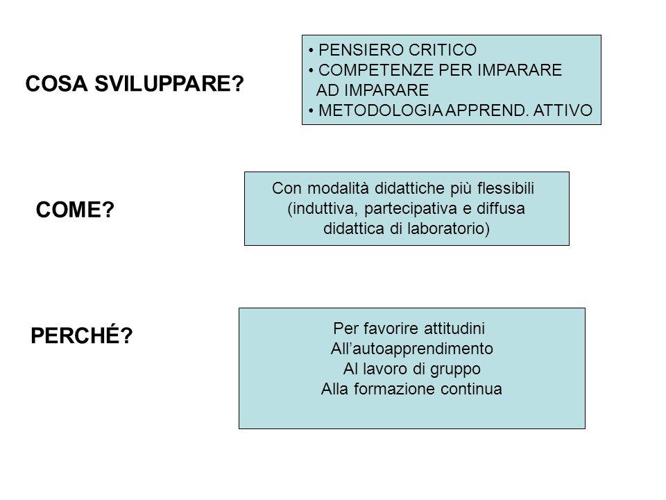 PENSIERO CRITICO COMPETENZE PER IMPARARE AD IMPARARE METODOLOGIA APPREND.