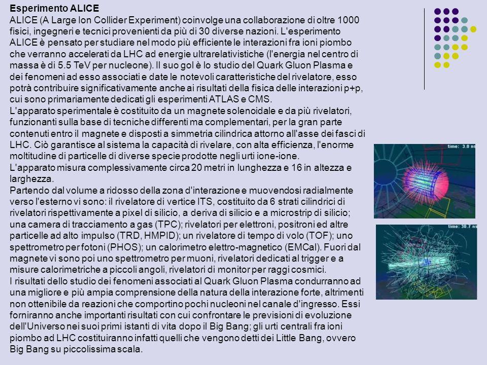 Esperimento ALICE ALICE (A Large Ion Collider Experiment) coinvolge una collaborazione di oltre 1000 fisici, ingegneri e tecnici provenienti da più di