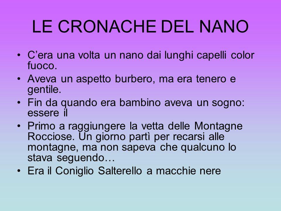 LE CRONACHE DEL NANO Cera una volta un nano dai lunghi capelli color fuoco. Aveva un aspetto burbero, ma era tenero e gentile. Fin da quando era bambi