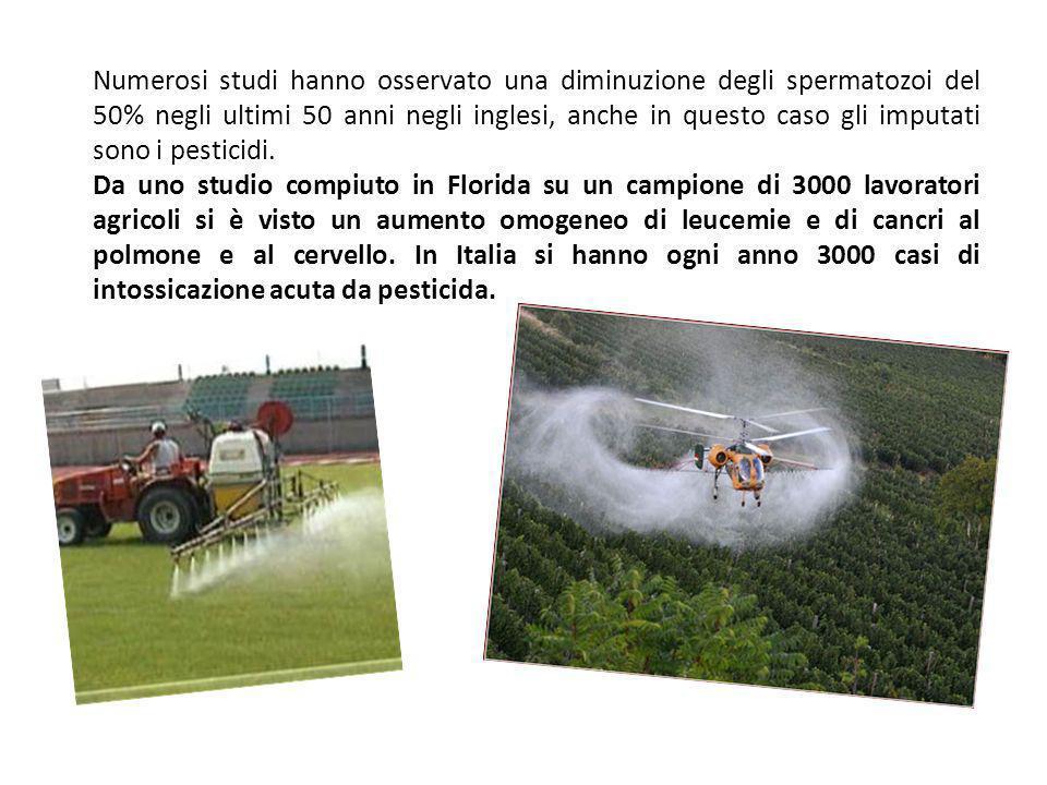 Per la loro stessa natura i pesticidi possono risultare pericolosi all uomo o agli altri animali, in quanto il loro scopo è di uccidere o danneggiare gli organismi viventi.