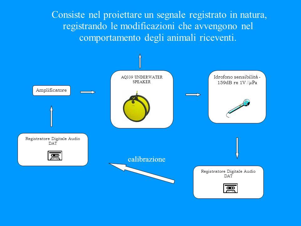 È una tecnica sperimentale usata per studiare il significato dei segnali biologici nella comunicazione animale. 2. Metodi acustici attivi (Tecnica del