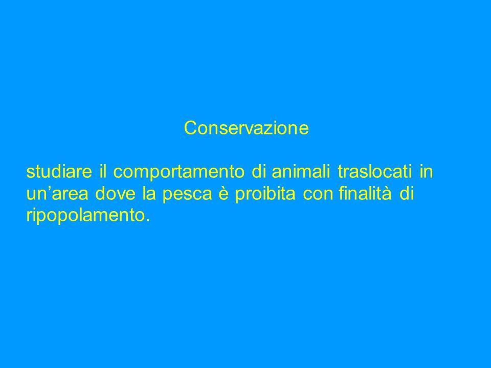 Specie target Astice (Homarus gammarus L.) Corvina (Sciaena umbra L.) - dal 1995, rientra nella lista delle specie il cui prelievo deve essere regolat