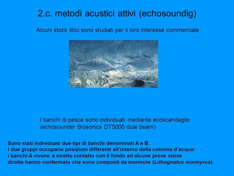 Conservazione studiare il comportamento di animali traslocati in unarea dove la pesca è proibita con finalità di ripopolamento.