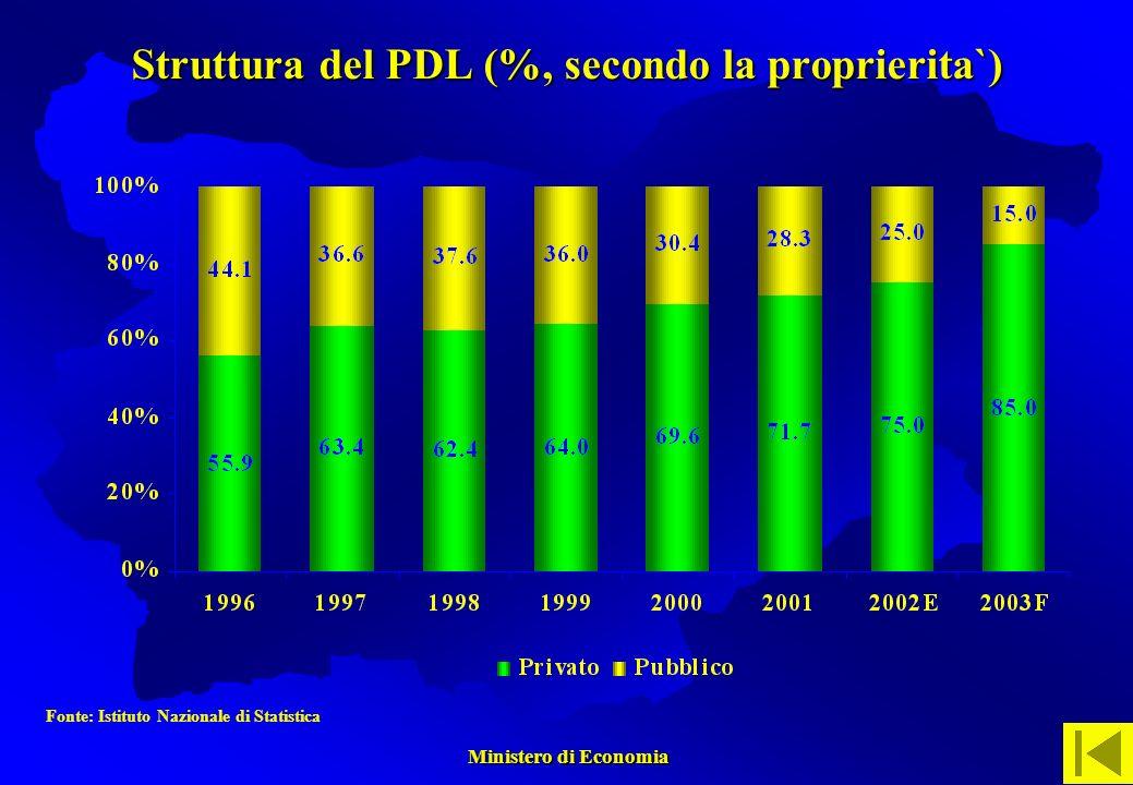 Ministero di Economia Ministero di Economia Struttura del PDL (%, secondo la proprierita`) Fonte: Istituto Nazionale di Statistica