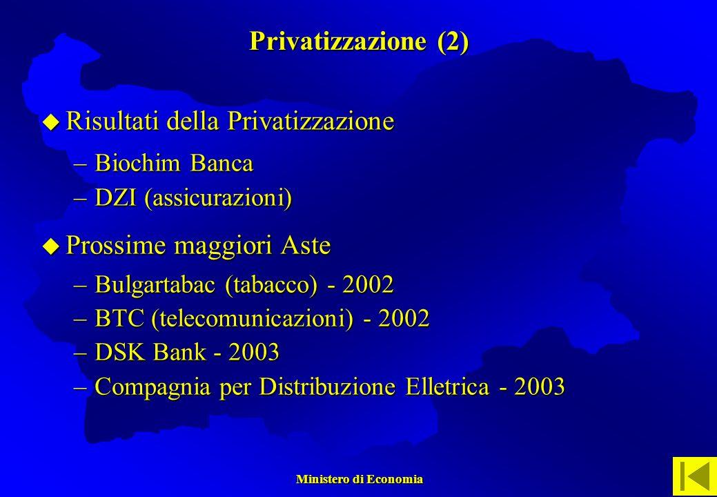 Ministero di Economia Ministero di Economia Risultati della Privatizzazione Risultati della Privatizzazione –Biochim Banca –DZI (assicurazioni) Prossime maggiori Aste Prossime maggiori Aste –Bulgartabac (tabacco) - 2002 –BTC (telecomunicazioni) - 2002 –DSK Bank - 2003 –Compagnia per Distribuzione Elletrica - 2003 Privatizzazione (2)