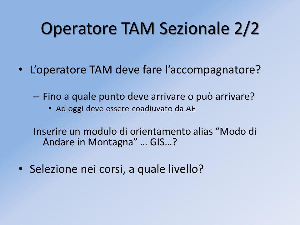 Operatore TAM Sezionale 2/2 Loperatore TAM deve fare laccompagnatore? – Fino a quale punto deve arrivare o può arrivare? Ad oggi deve essere coadiuvat