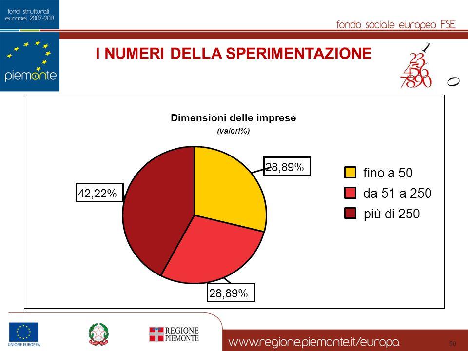 50 I NUMERI DELLA SPERIMENTAZIONE Dimensioni delle imprese (valori%) 42,22% 28,89% più di 250 da 51 a 250 fino a 50