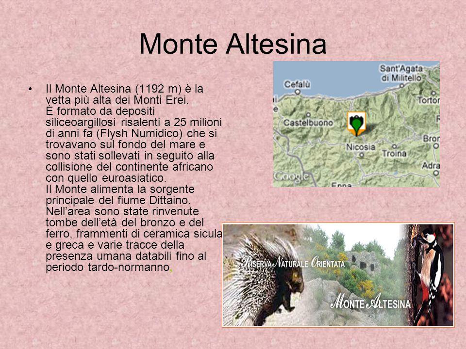 Monte Altesina Il Monte Altesina (1192 m) è la vetta più alta dei Monti Erei. È formato da depositi siliceoargillosi risalenti a 25 milioni di anni fa