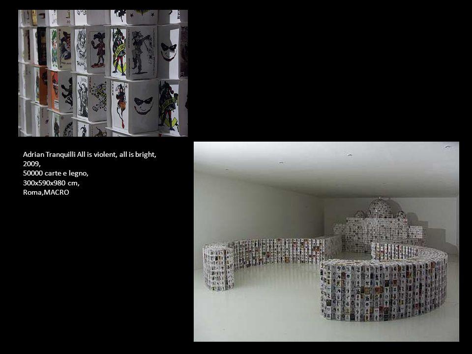 Adrian Tranquilli All is violent, all is bright, 2009, 50000 carte e legno, 300x590x980 cm, Roma,MACRO