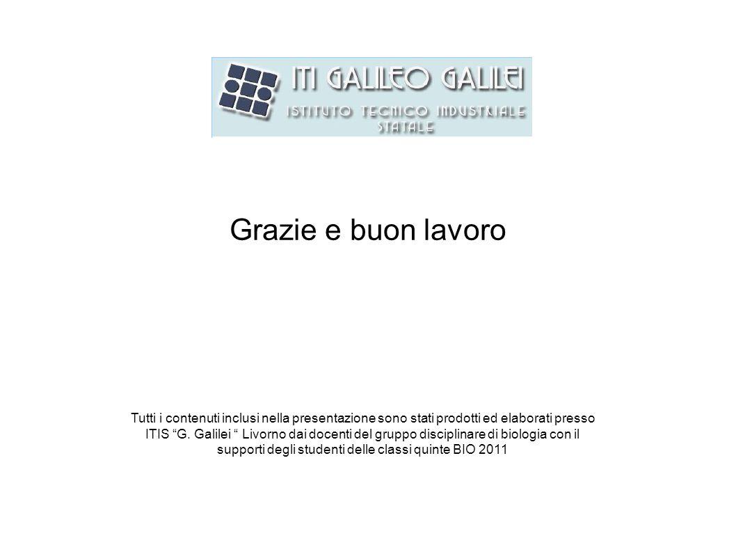 Grazie e buon lavoro Tutti i contenuti inclusi nella presentazione sono stati prodotti ed elaborati presso ITIS G. Galilei Livorno dai docenti del gru