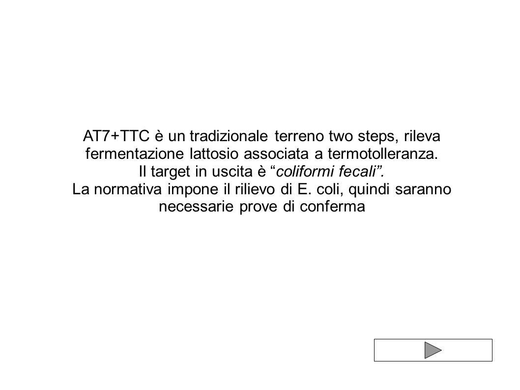 AT7+TTC è un tradizionale terreno two steps, rileva fermentazione lattosio associata a termotolleranza. Il target in uscita è coliformi fecali. La nor