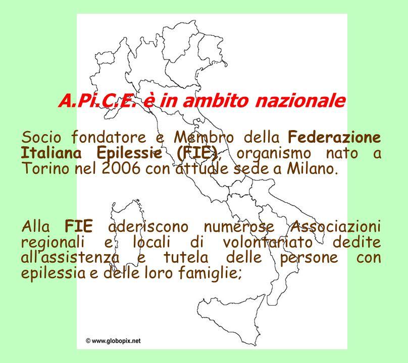 A.Pi.C.E. è in ambito nazionale Socio fondatore e Membro della Federazione Italiana Epilessie (FIE), organismo nato a Torino nel 2006 con attuale sede