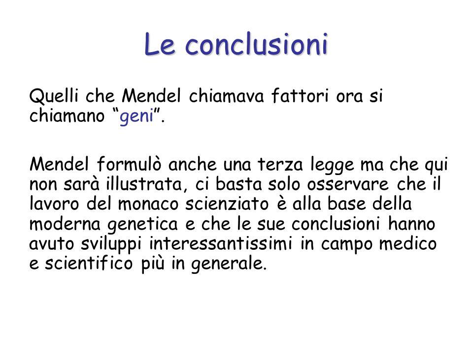 Quelli che Mendel chiamava fattori ora si chiamano geni. Mendel formulò anche una terza legge ma che qui non sarà illustrata, ci basta solo osservare