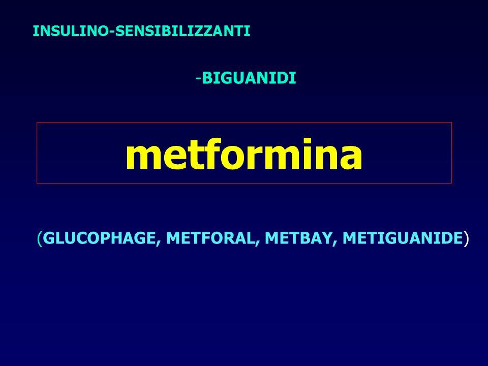 metformina INSULINO-SENSIBILIZZANTI -BIGUANIDI (GLUCOPHAGE, METFORAL, METBAY, METIGUANIDE)
