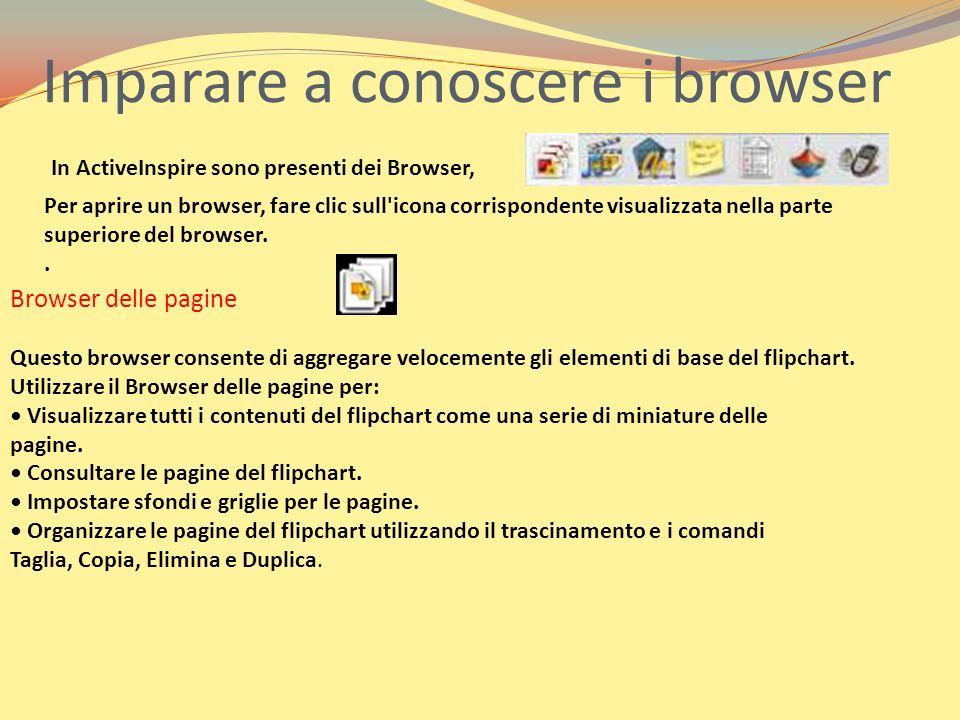 Browser delle risorse Questo browser consente di individuare, visualizzare e utilizzare rapidamente le risorse disponibili in ActivInspire, al fine di migliorare ulteriormente i flipchart.