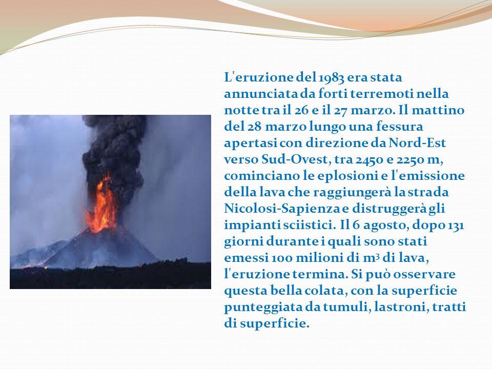 L eruzione del 1989 è caratterizzata da due fasi che si svolgono la prima dall 11 al 27 settembre e la seconda dal 27 settembre al 9 ottobre.