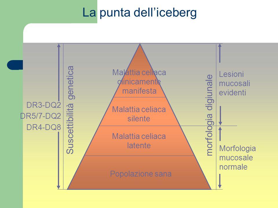 Malattia celiaca clinicamente manifesta Malattia celiaca silente Malattia celiaca latente Popolazione sana DR3-DQ2 DR5/7-DQ2 DR4-DQ8 La punta delliceb