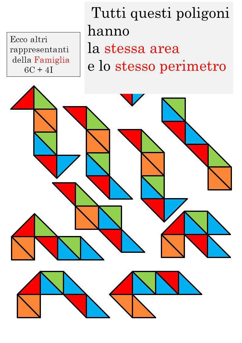 Ecco altri rappresentanti della Famiglia 6C + 4I Tutti questi poligoni hanno la stessa area e lo stesso perimetro