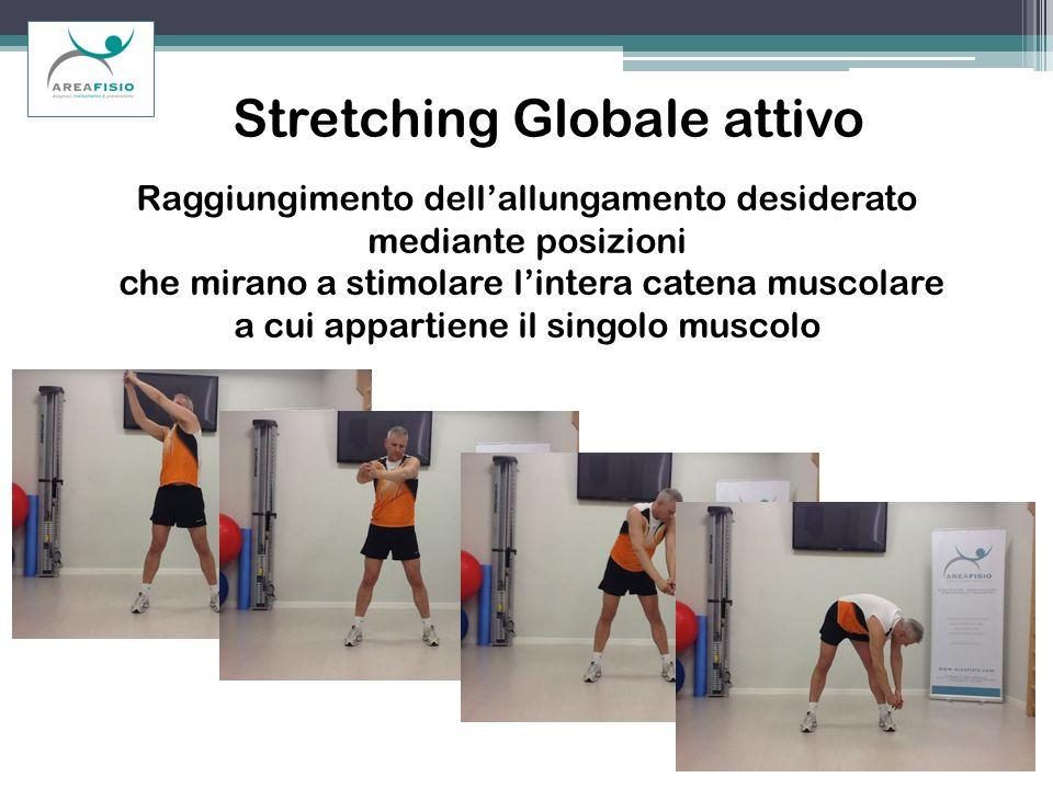 Stretching Globale attivo Raggiungimento dellallungamento desiderato mediante posizioni che mirano a stimolare lintera catena muscolare a cui appartie