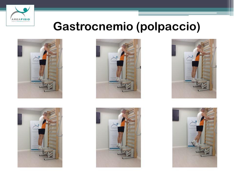 Gastrocnemio (polpaccio)