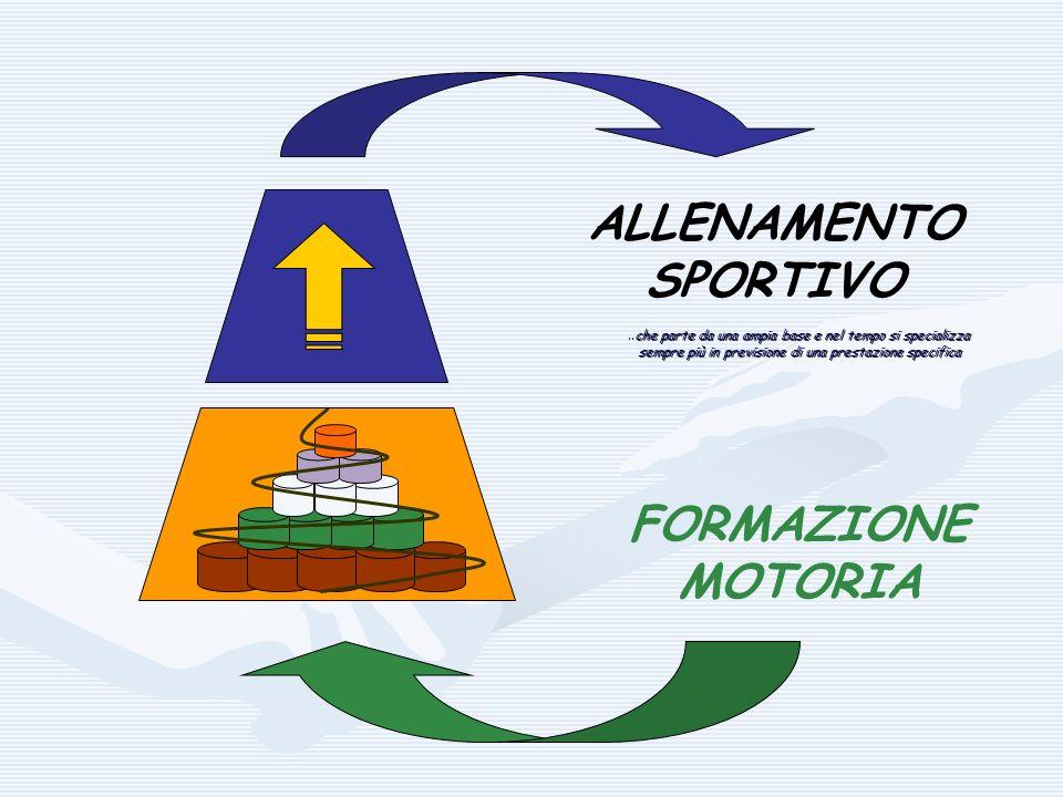 ALLENAMENTO SPORTIVO FORMAZIONE MOTORIA..che parte da una ampia base e nel tempo si specializza sempre più in previsione di una prestazione specifica