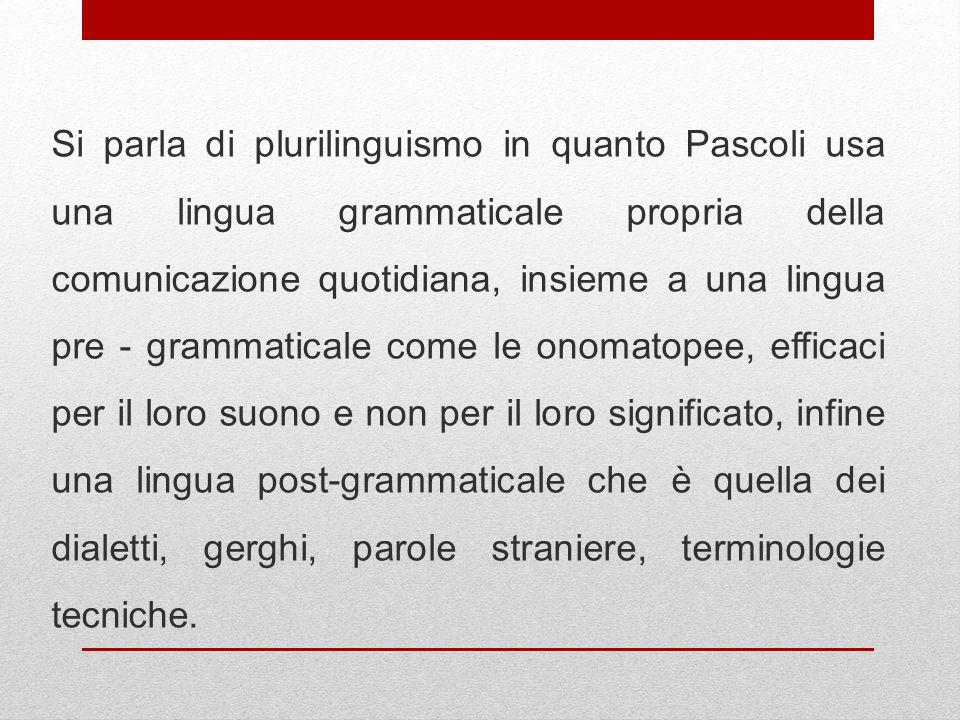 Si parla di plurilinguismo in quanto Pascoli usa una lingua grammaticale propria della comunicazione quotidiana, insieme a una lingua pre - grammatica