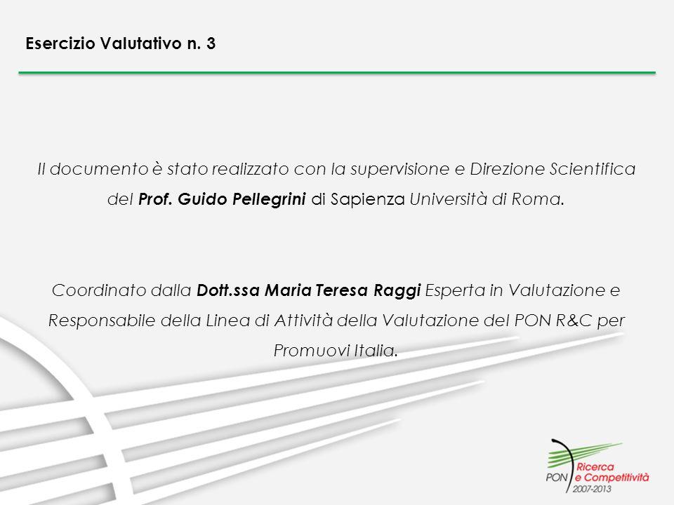 Il documento è stato realizzato con la supervisione e Direzione Scientifica del Prof. Guido Pellegrini di Sapienza Università di Roma. Coordinato dall