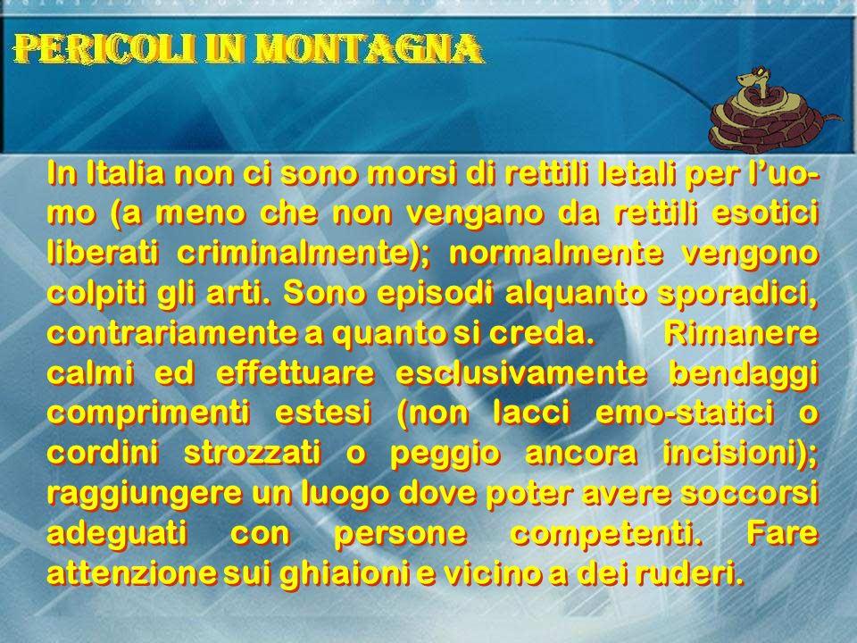 In Italia non ci sono morsi di rettili letali per luo- mo (a meno che non vengano da rettili esotici liberati criminalmente); normalmente vengono colpiti gli arti.