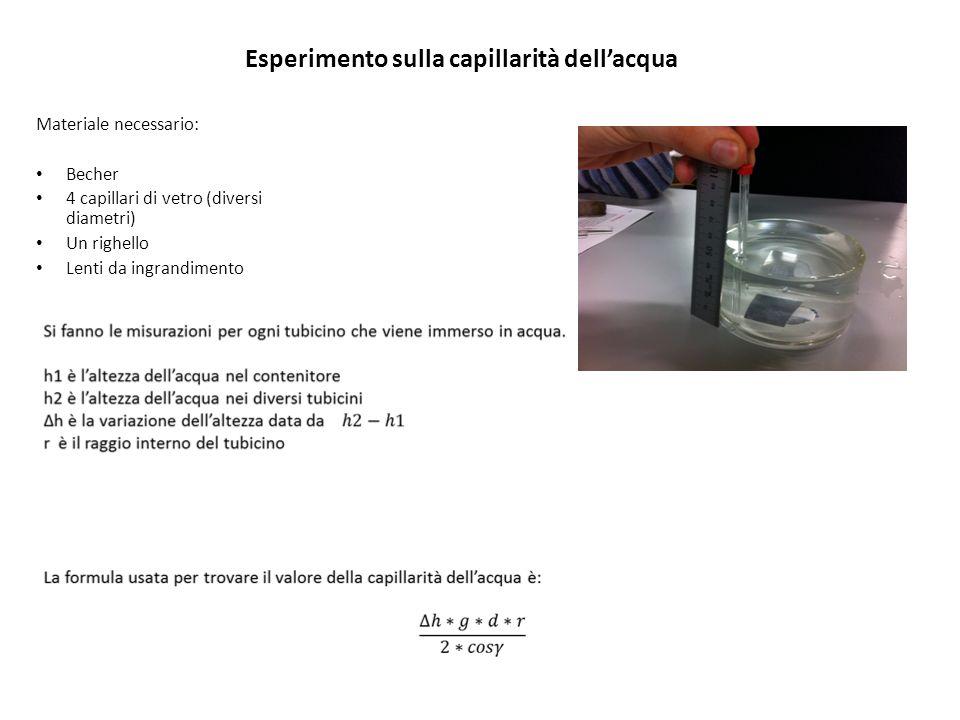 Esperimento sulla capillarità dellacqua Materiale necessario: Becher 4 capillari di vetro (diversi diametri) Un righello Lenti da ingrandimento