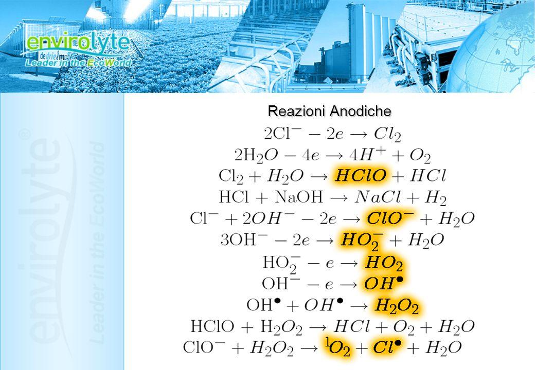 Reazioni Anodiche 2Cl- - 2e Cl2 2H2O – 4e 4H+ + O2 Cl2 + H2O HClO + HCl HCl + NaOH NaCl + H2 Cl- + 2OH- - 2e ClO- + H2O 3OH- - 2e HO2- + H2O HO2- - e