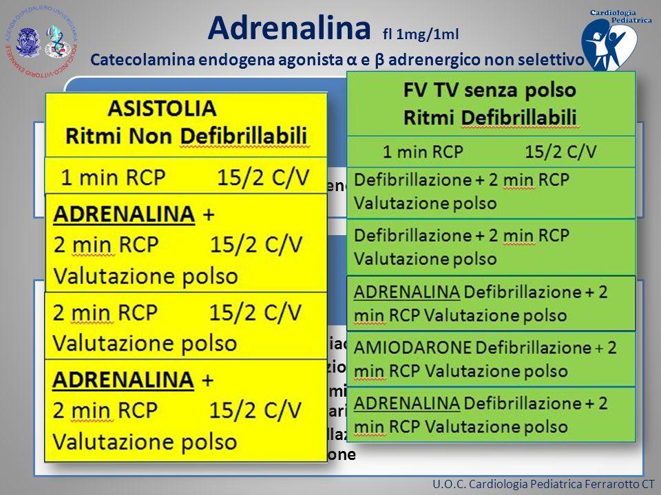 U.O.C. Cardiologia Pediatrica Ferrarotto CT Vasocostrittore arteriolare e venoso Effetto agonista α Aumento della frequenza cardiaca Aumento della for