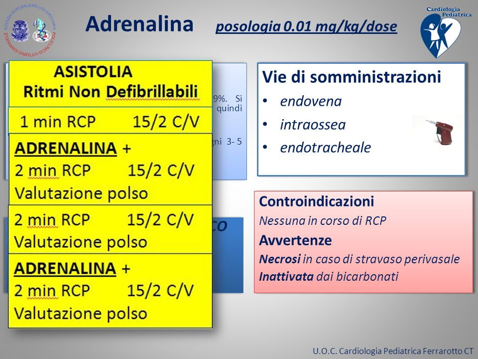 U.O.C. Cardiologia Pediatrica Ferrarotto CT Adrenalina posologia 0.01 mg/kg/dose Preparazione 1 ml = 1 mg Diluire 1 fiala(1 ml) in 9ml di NaCL 0.9%. S