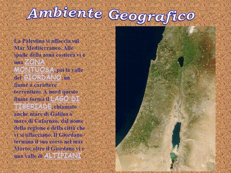La Palestina si affaccia sul Mar Mediterraneo.
