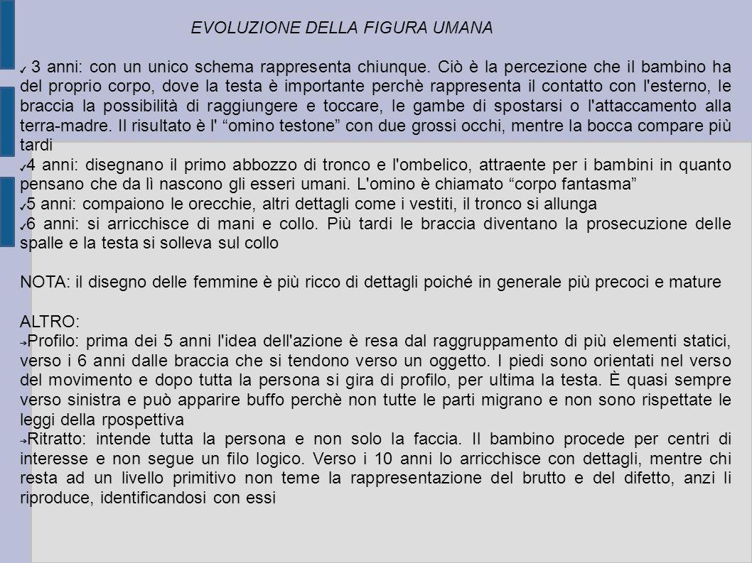 EVOLUZIONE DELLA FIGURA UMANA 3 anni: con un unico schema rappresenta chiunque.