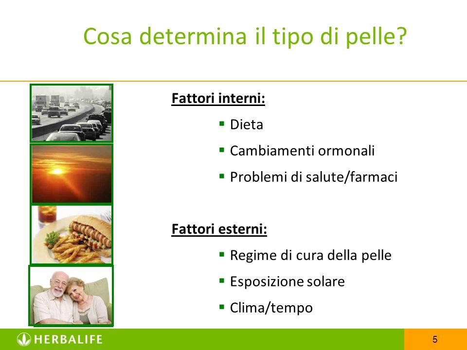 5 Cosa determina il tipo di pelle? Fattori interni: Dieta Cambiamenti ormonali Problemi di salute/farmaci Fattori esterni: Regime di cura della pelle